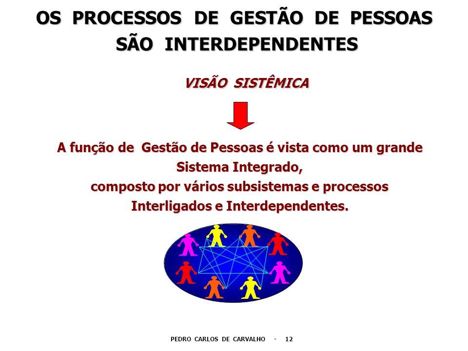 OS PROCESSOS DE GESTÃO DE PESSOAS PEDRO CARLOS DE CARVALHO - 12