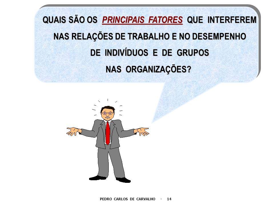 QUAIS SÃO OS PRINCIPAIS FATORES QUE INTERFEREM