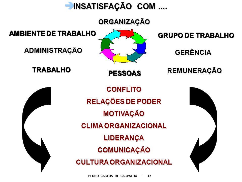 CULTURA ORGANIZACIONAL PEDRO CARLOS DE CARVALHO - 15