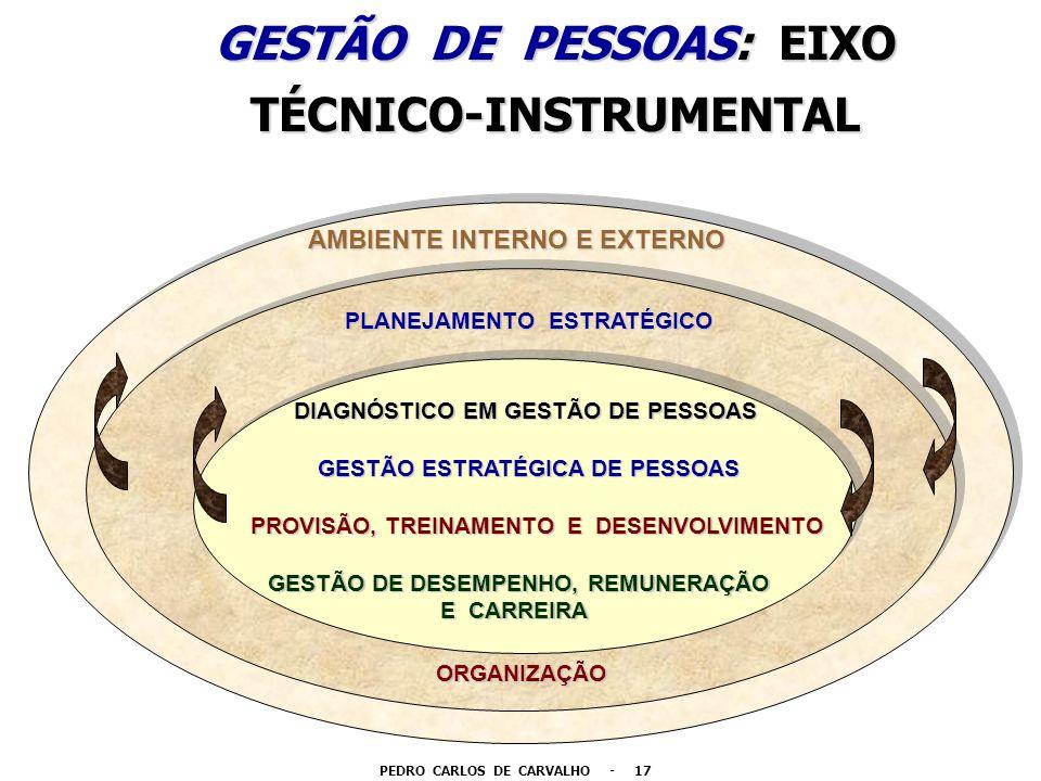 GESTÃO DE PESSOAS: EIXO TÉCNICO-INSTRUMENTAL