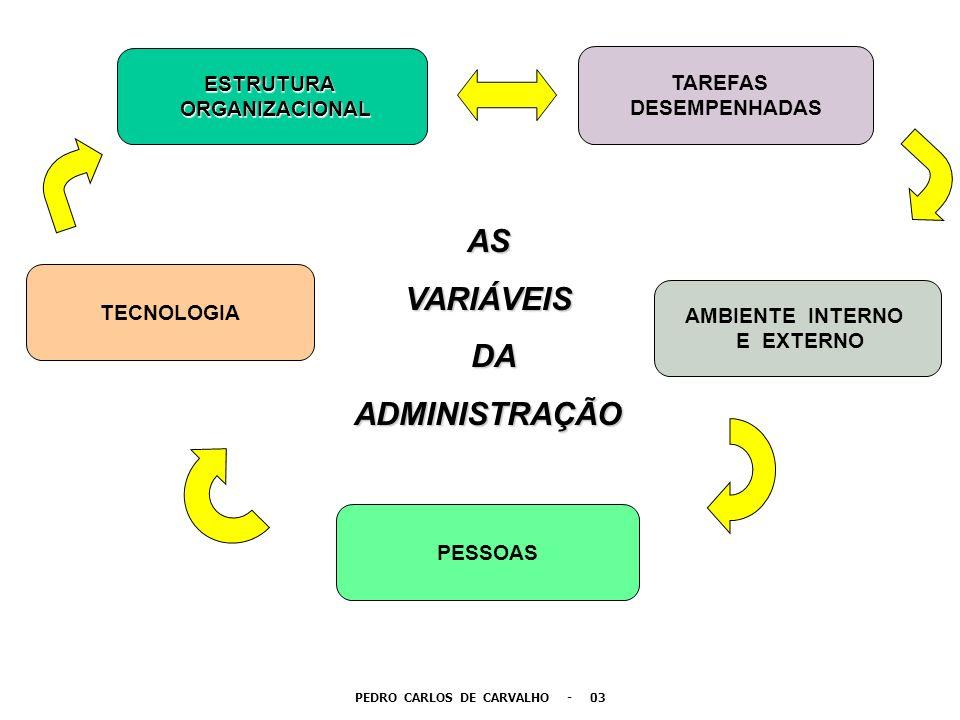 PEDRO CARLOS DE CARVALHO - 03