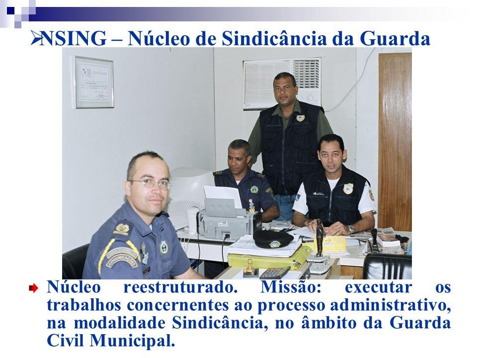 NSING – Núcleo de Sindicância da Guarda
