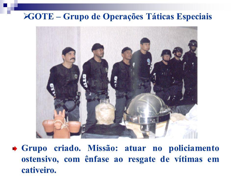 GOTE – Grupo de Operações Táticas Especiais