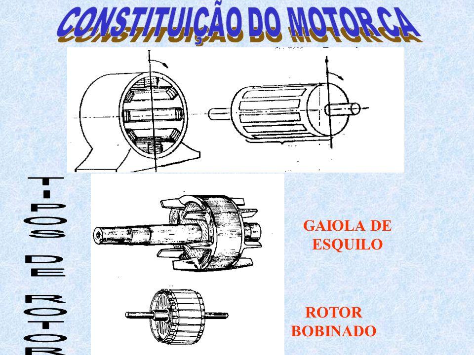 CONSTITUIÇÃO DO MOTOR CA