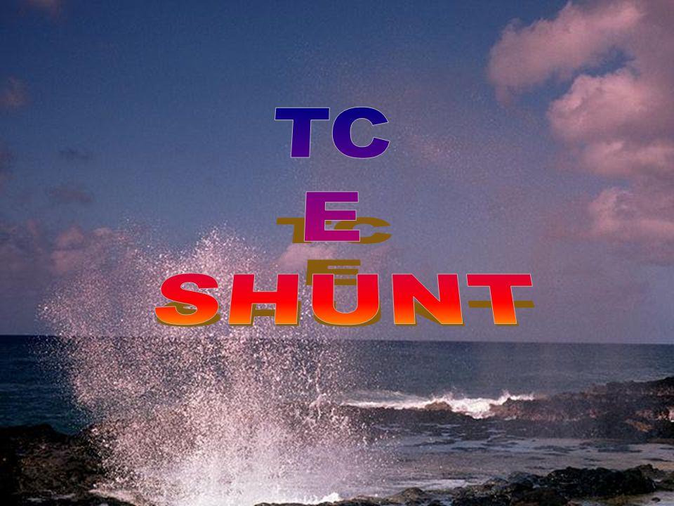 TC E SHUNT