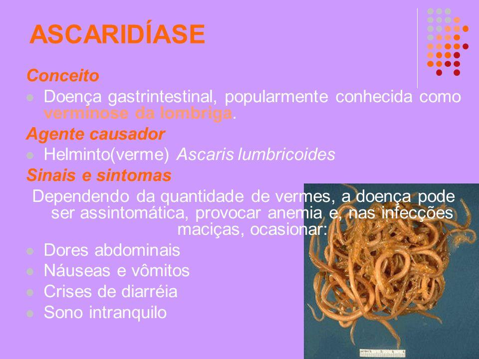 ASCARIDÍASE Conceito. Doença gastrintestinal, popularmente conhecida como verminose da lombriga. Agente causador.