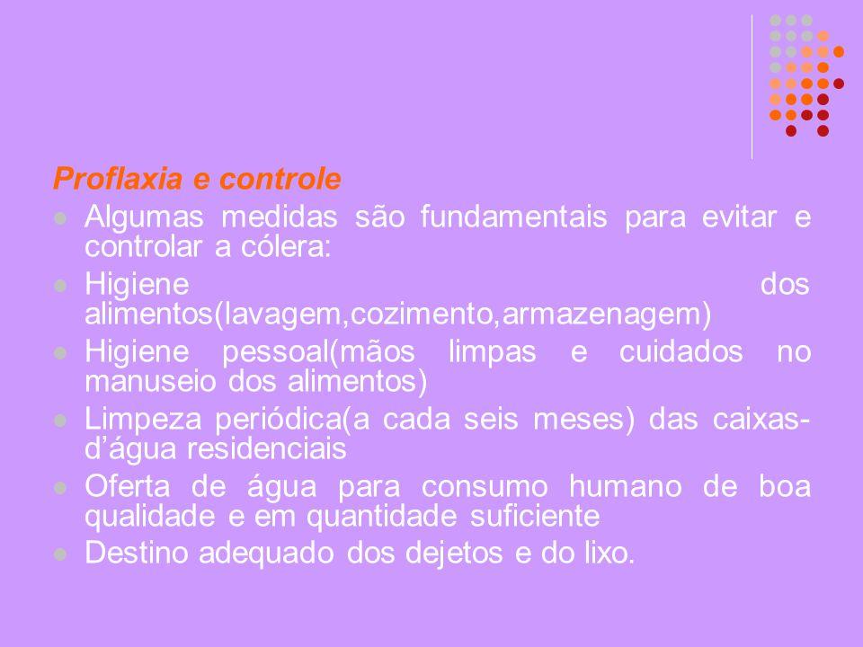 Proflaxia e controle Algumas medidas são fundamentais para evitar e controlar a cólera: Higiene dos alimentos(lavagem,cozimento,armazenagem)