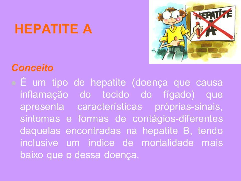 HEPATITE A Conceito.