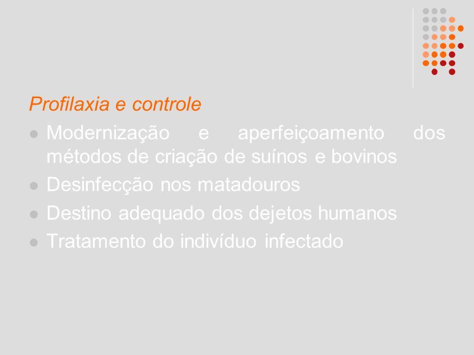 Profilaxia e controle Modernização e aperfeiçoamento dos métodos de criação de suínos e bovinos. Desinfecção nos matadouros.