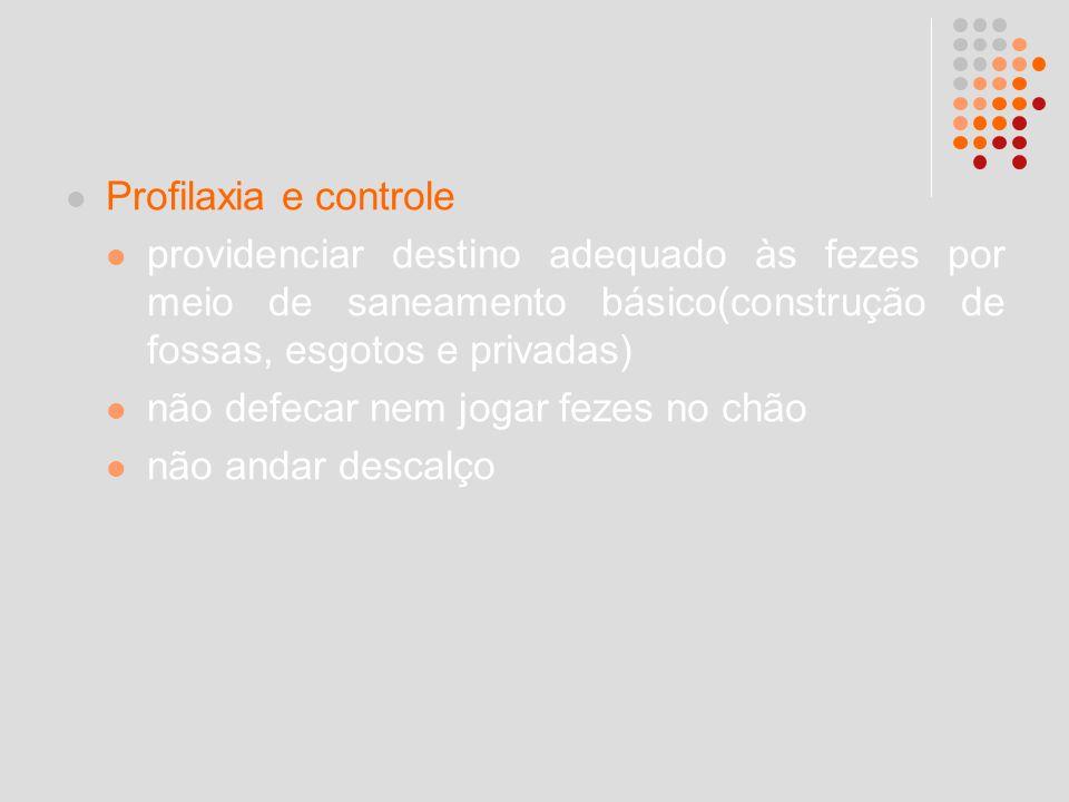 Profilaxia e controle providenciar destino adequado às fezes por meio de saneamento básico(construção de fossas, esgotos e privadas)