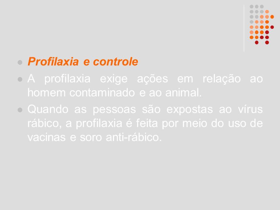 Profilaxia e controle A profilaxia exige ações em relação ao homem contaminado e ao animal.
