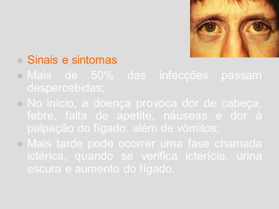 Sinais e sintomas Mais de 50% das infecções passam despercebidas;