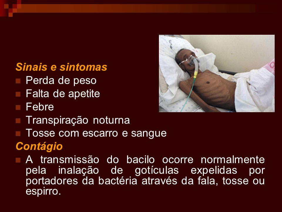 Sinais e sintomas Perda de peso. Falta de apetite. Febre. Transpiração noturna. Tosse com escarro e sangue.