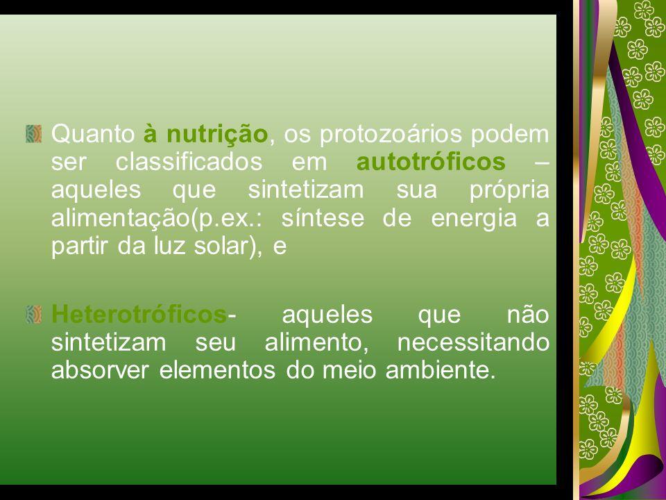Quanto à nutrição, os protozoários podem ser classificados em autotróficos – aqueles que sintetizam sua própria alimentação(p.ex.: síntese de energia a partir da luz solar), e