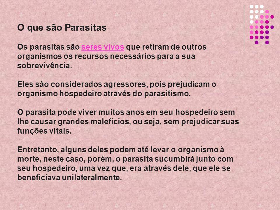 O que são Parasitas Os parasitas são seres vivos que retiram de outros organismos os recursos necessários para a sua sobrevivência. Eles são considerados agressores, pois prejudicam o organismo hospedeiro através do parasitismo.