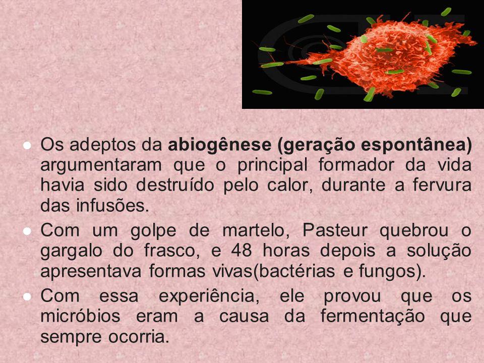 Os adeptos da abiogênese (geração espontânea) argumentaram que o principal formador da vida havia sido destruído pelo calor, durante a fervura das infusões.