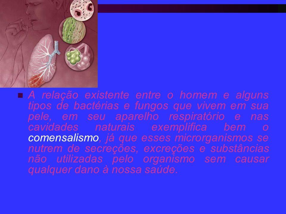 A relação existente entre o homem e alguns tipos de bactérias e fungos que vivem em sua pele, em seu aparelho respiratório e nas cavidades naturais exemplifica bem o comensalismo, já que esses microrganismos se nutrem de secreções, excreções e substâncias não utilizadas pelo organismo sem causar qualquer dano à nossa saúde.