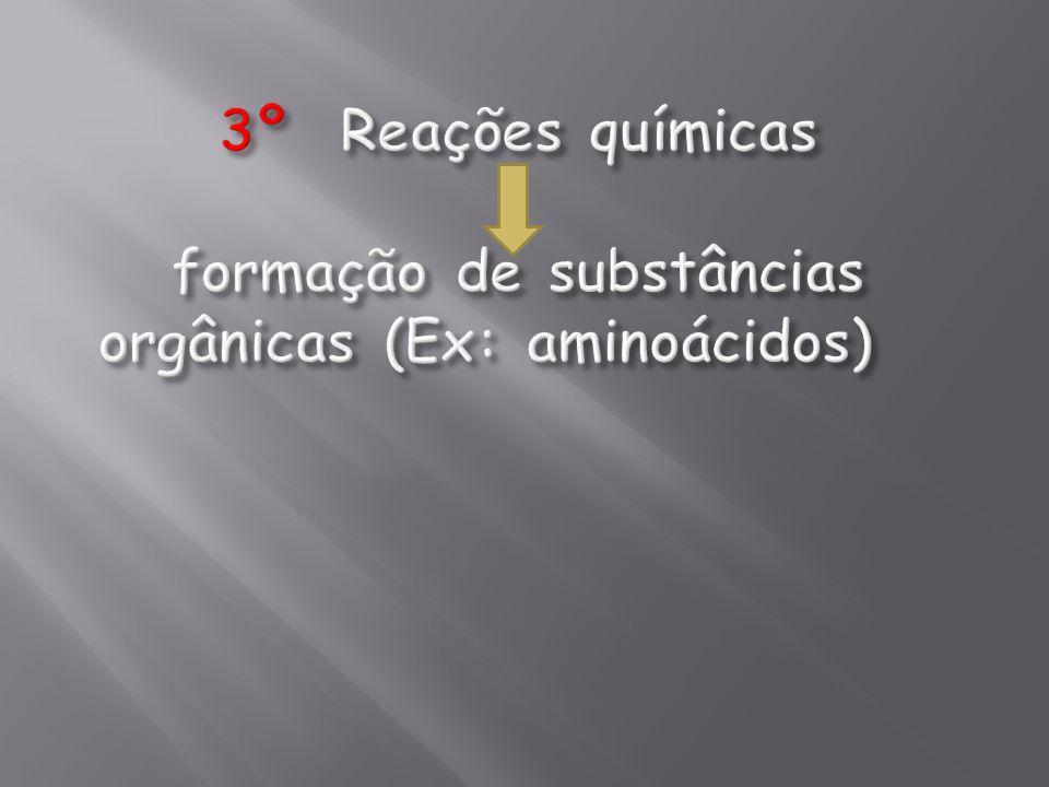 3º Reações químicas formação de substâncias orgânicas (Ex: aminoácidos)