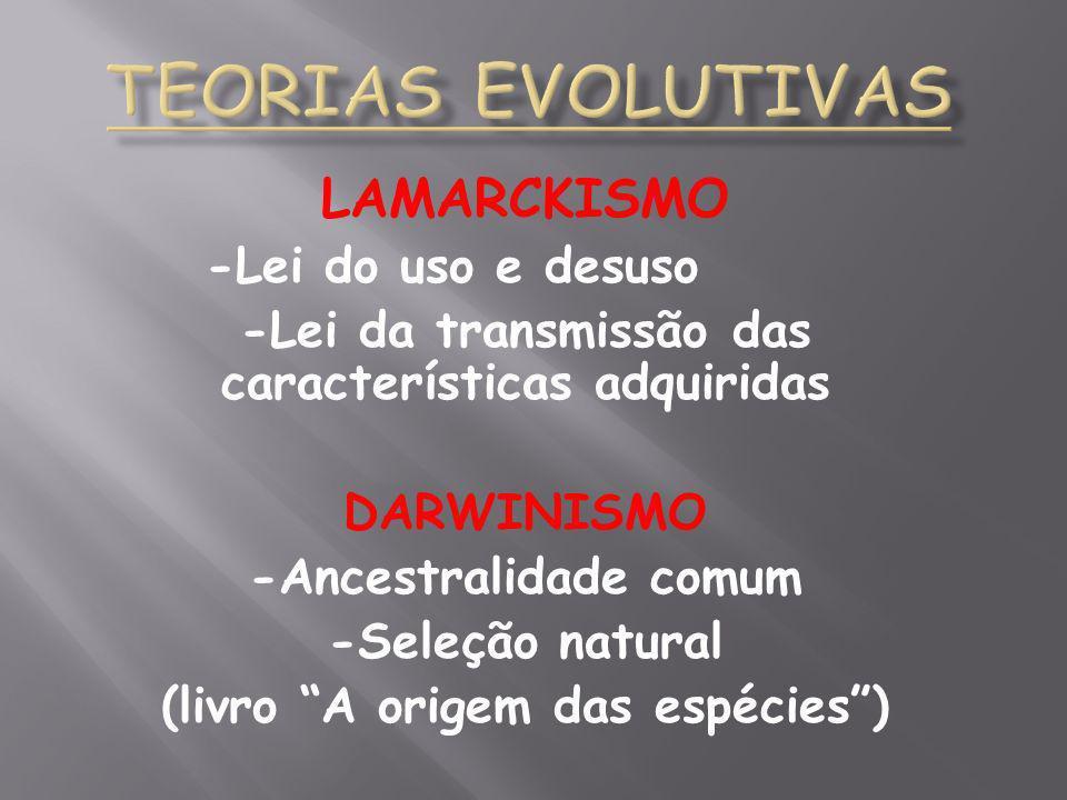 Teorias Evolutivas LAMARCKISMO -Lei do uso e desuso