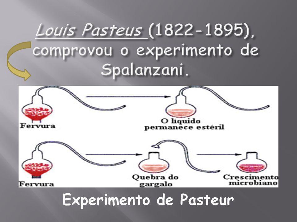 Louis Pasteus (1822-1895), comprovou o experimento de Spalanzani.