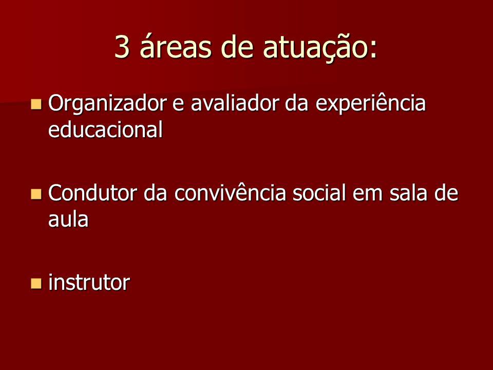 3 áreas de atuação: Organizador e avaliador da experiência educacional