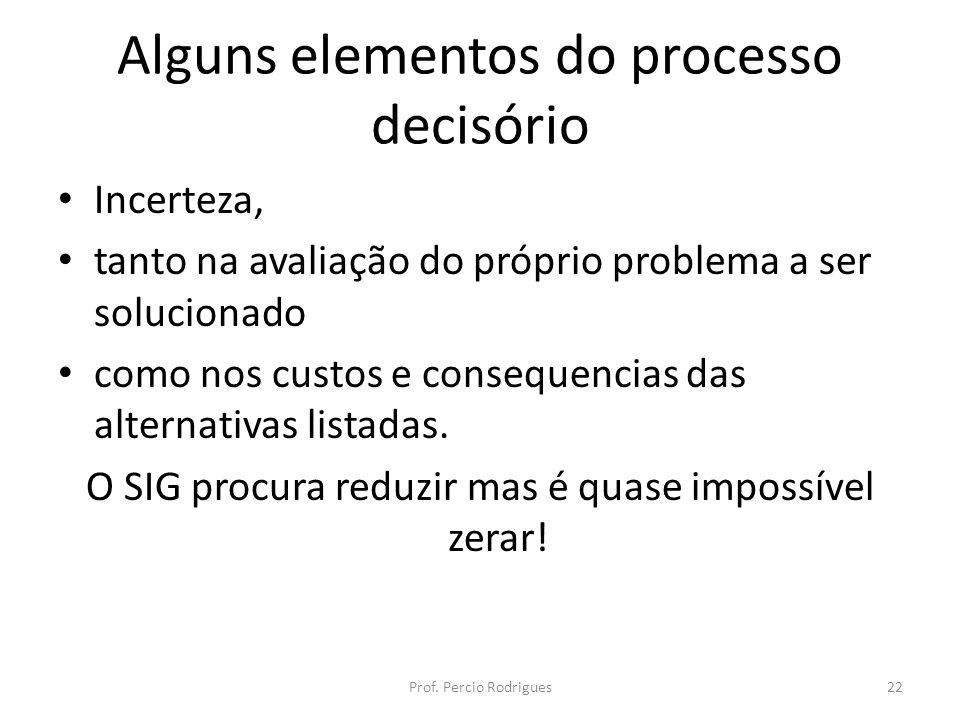 Alguns elementos do processo decisório