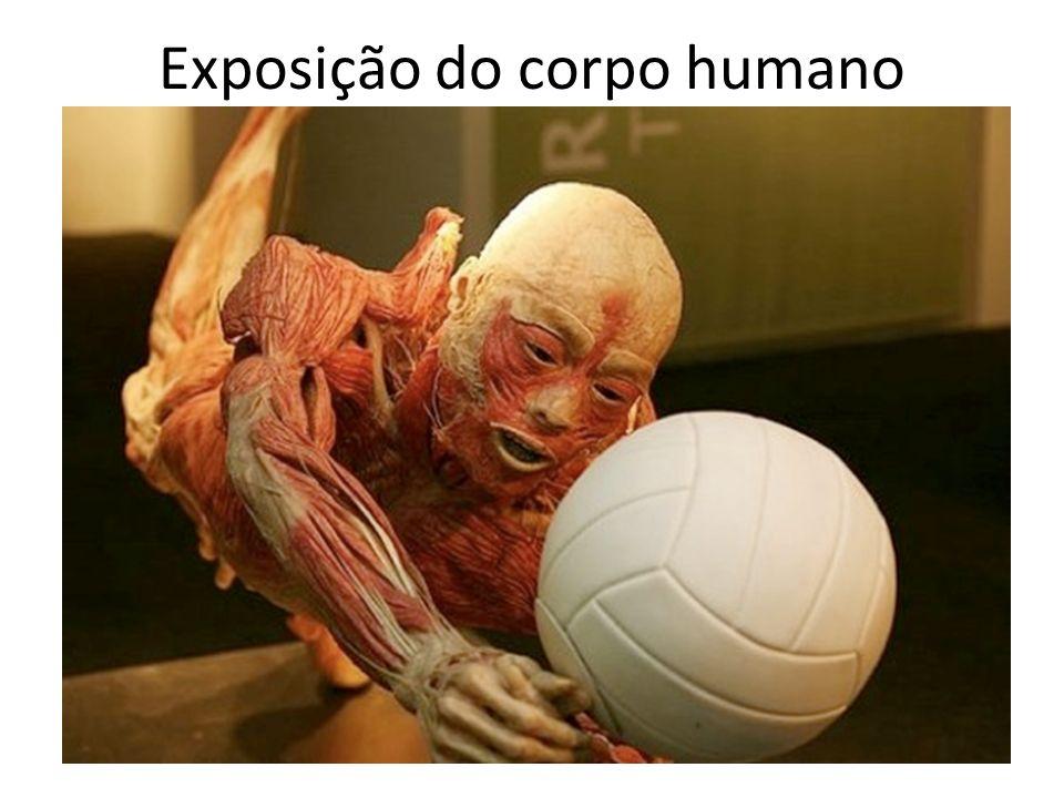 Exposição do corpo humano