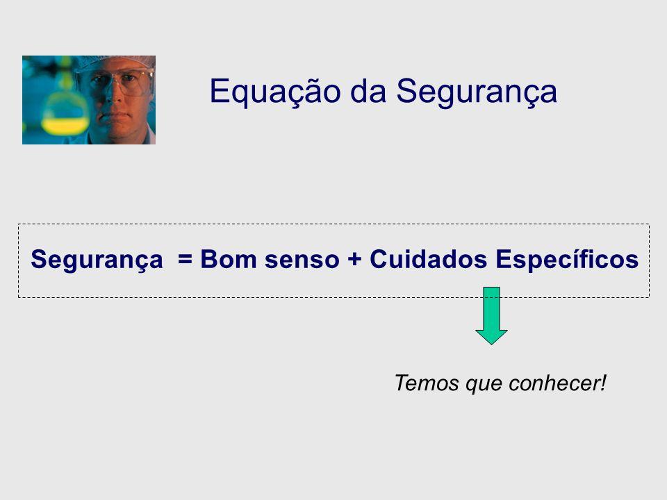 Equação da Segurança Segurança = Bom senso + Cuidados Específicos