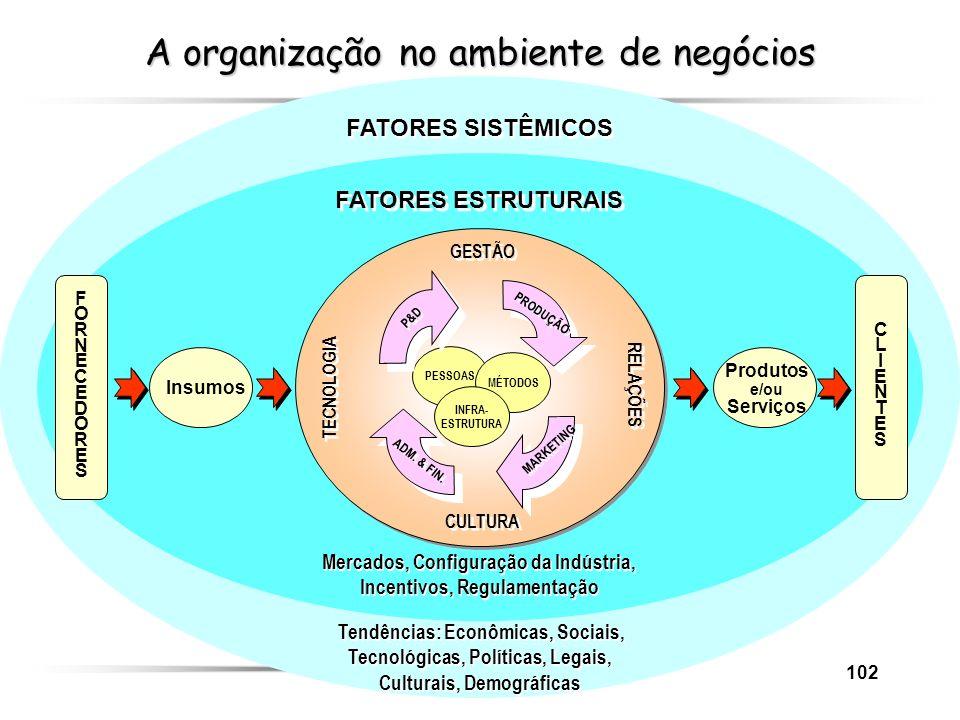 A organização no ambiente de negócios