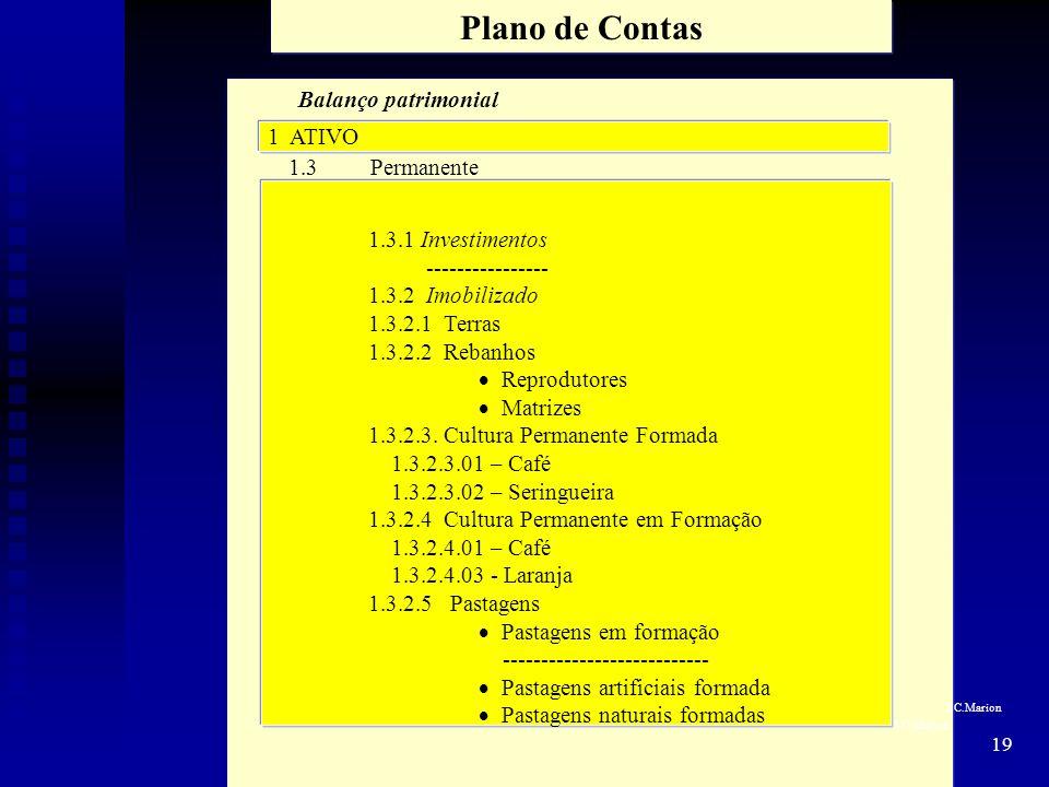 Plano de Contas Balanço patrimonial 1 ATIVO 1.3 Permanente