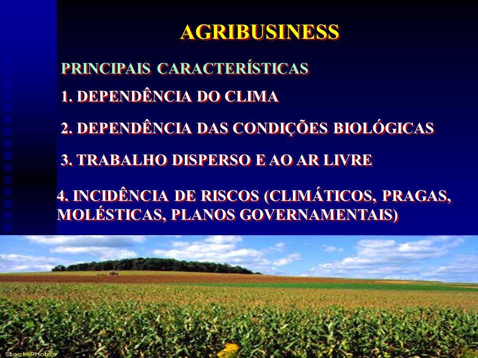 AGRIBUSINESS PRINCIPAIS CARACTERÍSTICAS 1. DEPENDÊNCIA DO CLIMA
