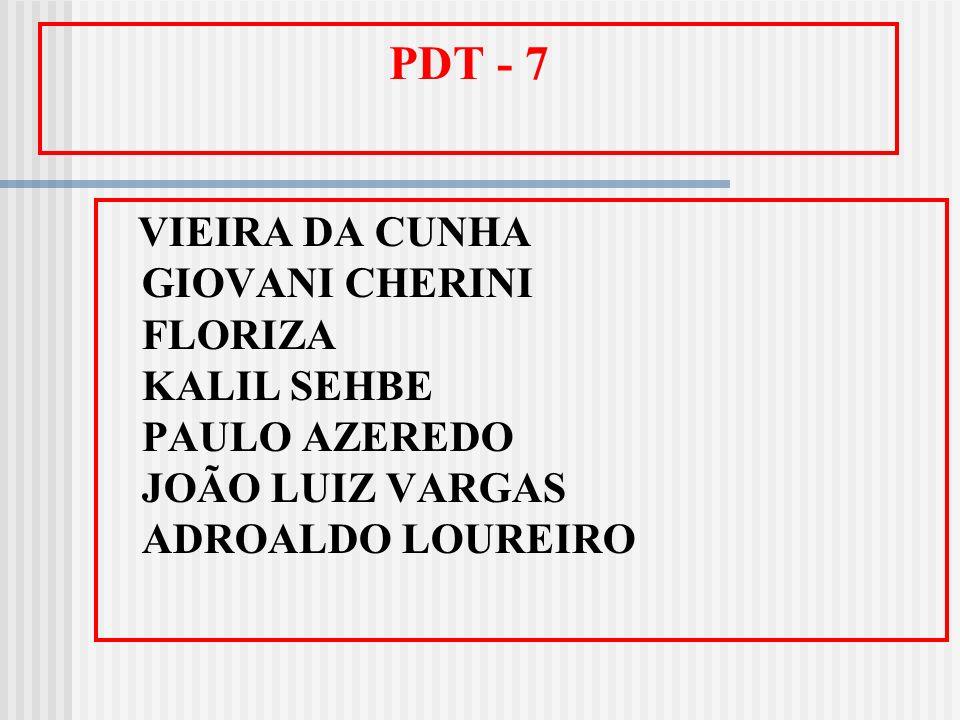 PDT - 7 VIEIRA DA CUNHA GIOVANI CHERINI FLORIZA KALIL SEHBE PAULO AZEREDO JOÃO LUIZ VARGAS ADROALDO LOUREIRO.