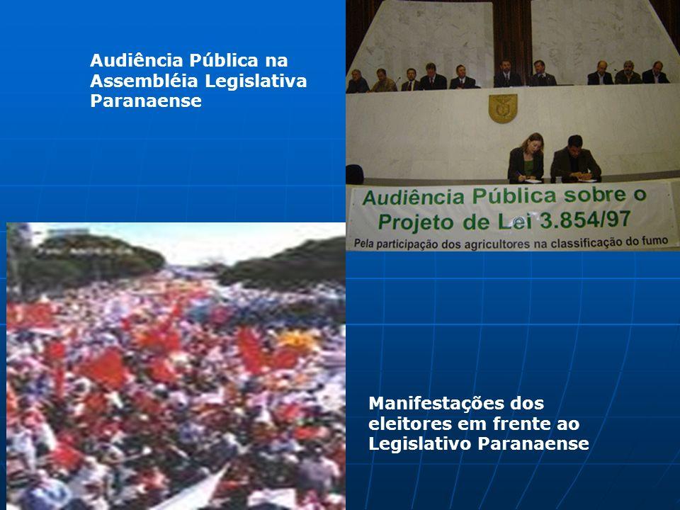 Audiência Pública na Assembléia Legislativa Paranaense