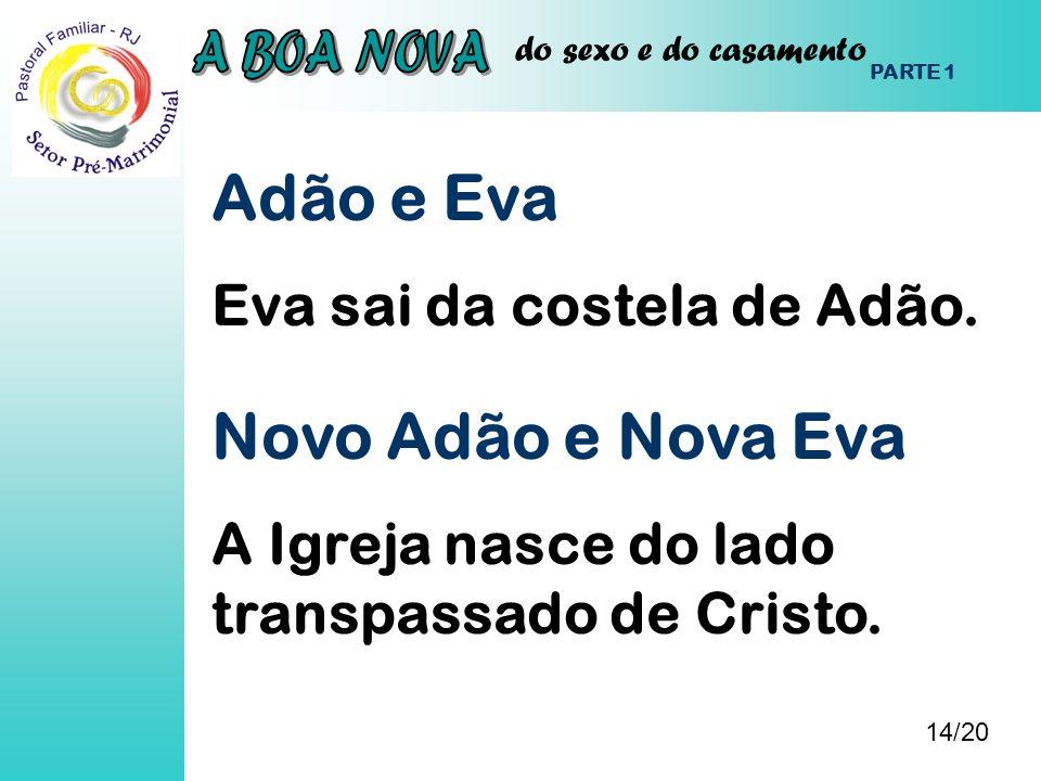Adão e Eva Novo Adão e Nova Eva Eva sai da costela de Adão.