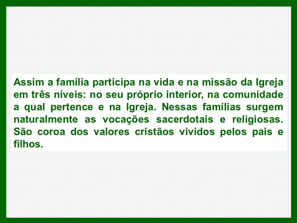 Assim a família participa na vida e na missão da Igreja em três níveis: no seu próprio interior, na comunidade a qual pertence e na Igreja.