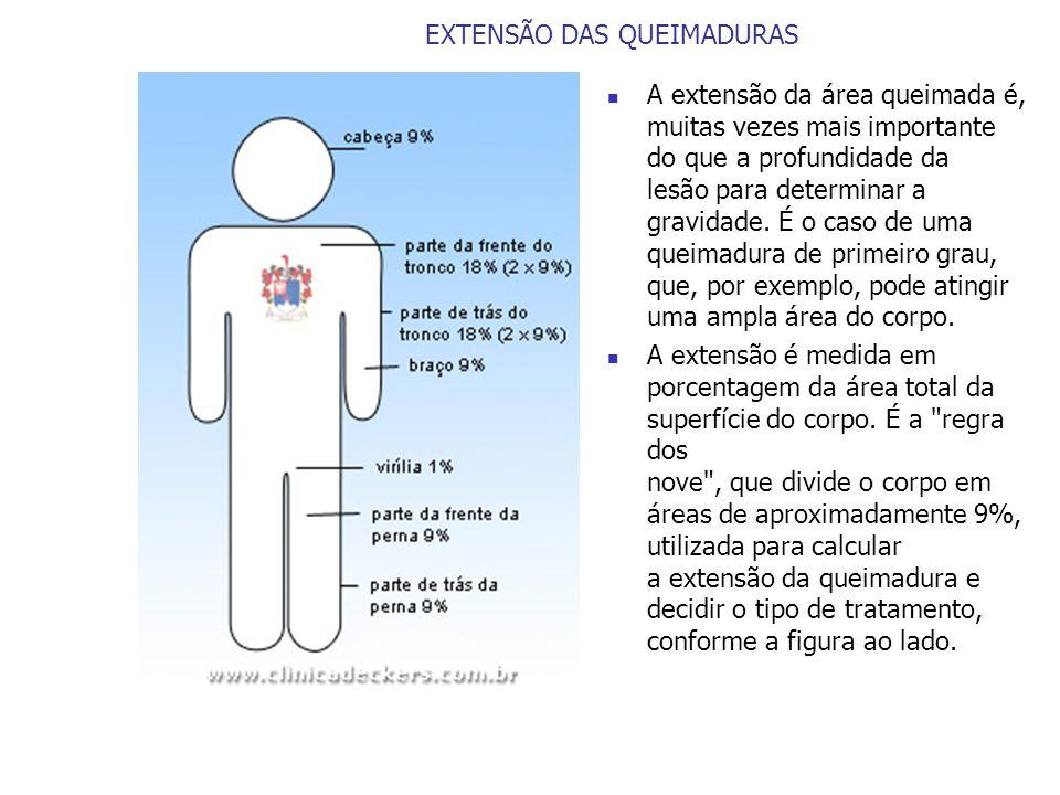 EXTENSÃO DAS QUEIMADURAS