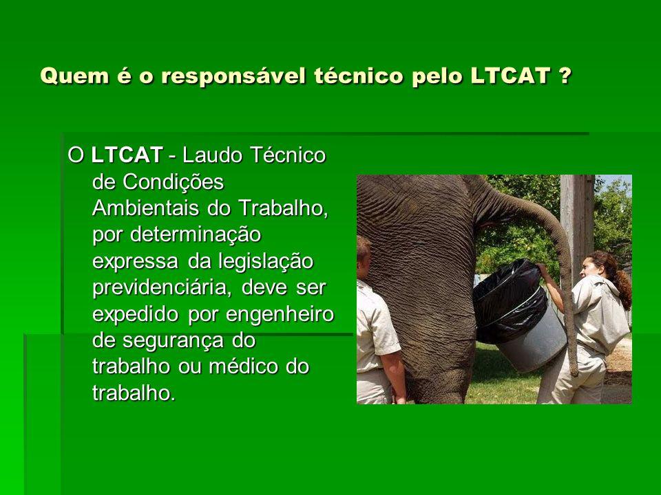 Quem é o responsável técnico pelo LTCAT