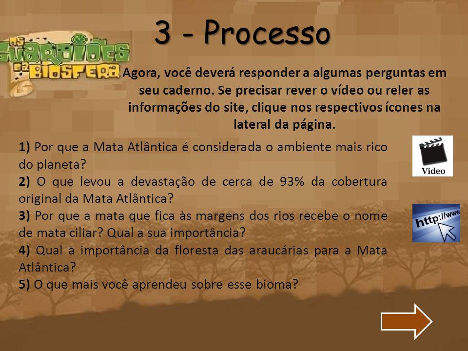 3 - Processo