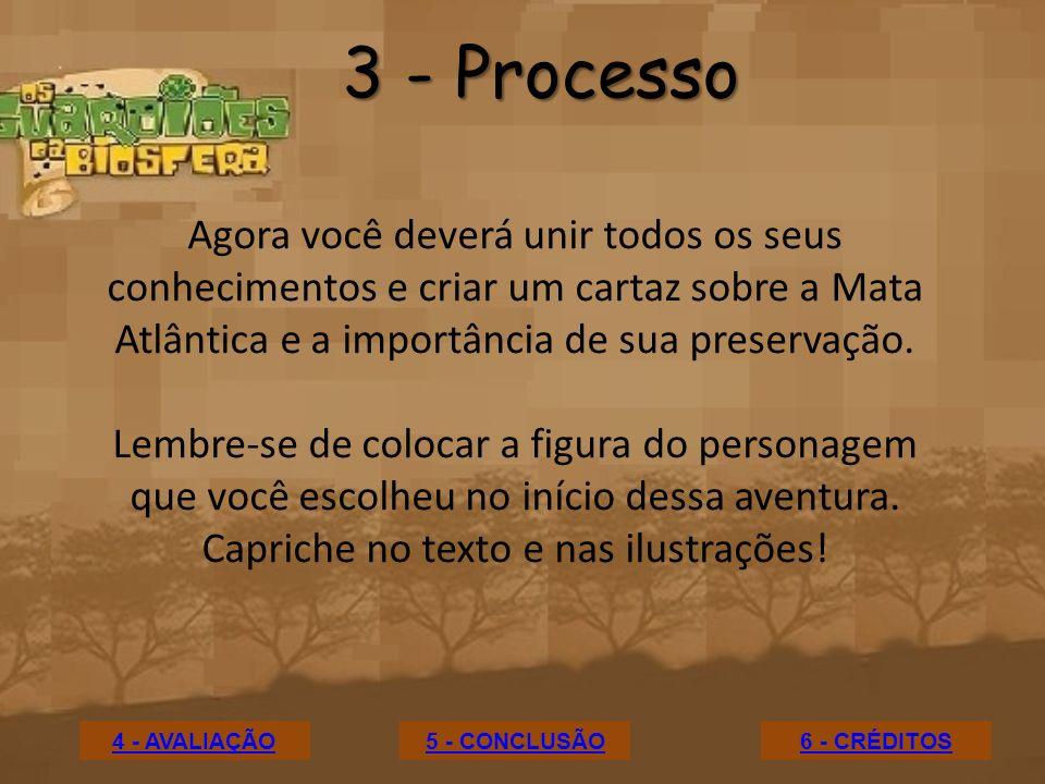 3 - ProcessoAgora você deverá unir todos os seus conhecimentos e criar um cartaz sobre a Mata Atlântica e a importância de sua preservação.