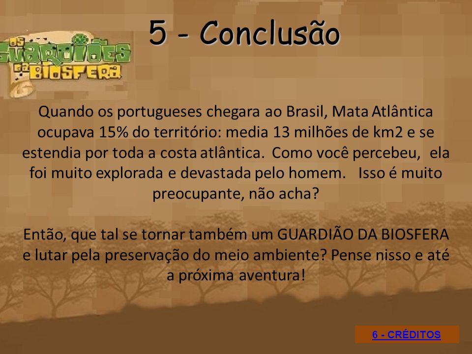 5 - Conclusão
