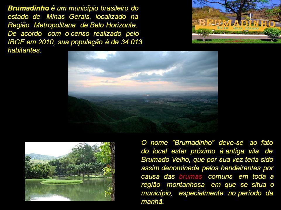 Brumadinho é um município brasileiro do estado de Minas Gerais, localizado na Região Metropolitana de Belo Horizonte. De acordo com o censo realizado pelo IBGE em 2010, sua população é de 34.013 habitantes.