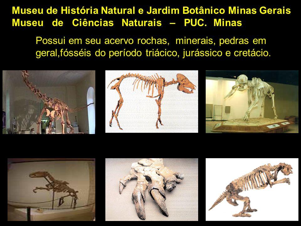 Museu de História Natural e Jardim Botânico Minas Gerais