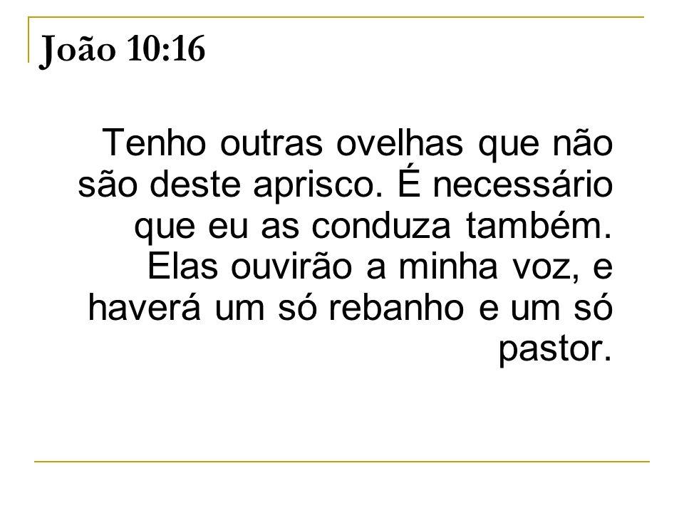 João 10:16