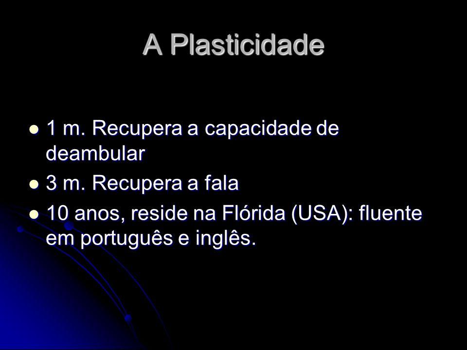 A Plasticidade 1 m. Recupera a capacidade de deambular