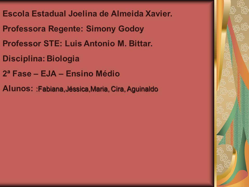 Escola Estadual Joelina de Almeida Xavier.