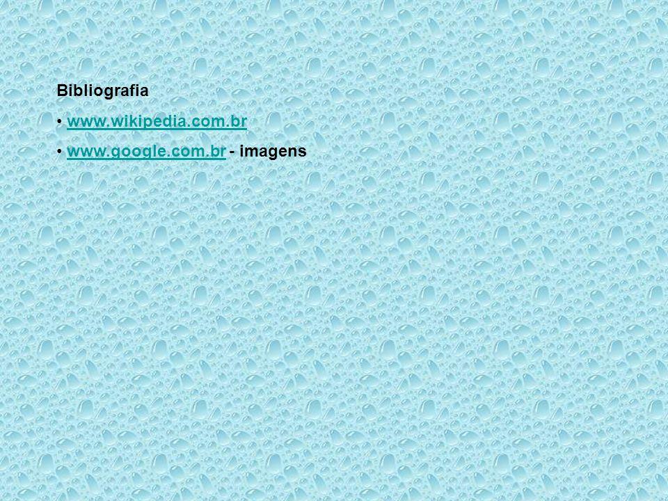 Bibliografia www.wikipedia.com.br www.google.com.br - imagens