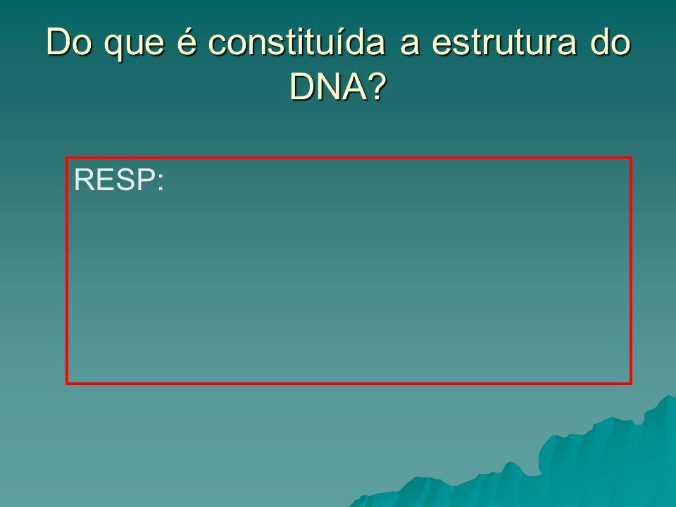 Do que é constituída a estrutura do DNA
