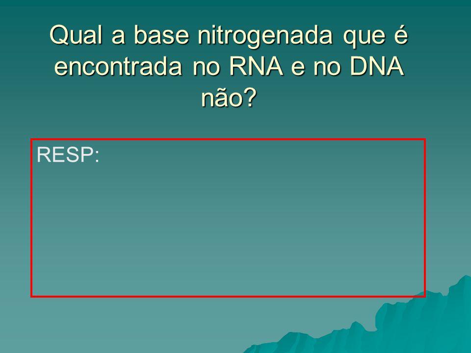 Qual a base nitrogenada que é encontrada no RNA e no DNA não