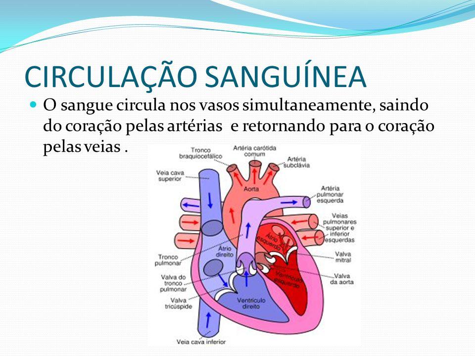 CIRCULAÇÃO SANGUÍNEA O sangue circula nos vasos simultaneamente, saindo do coração pelas artérias e retornando para o coração pelas veias .