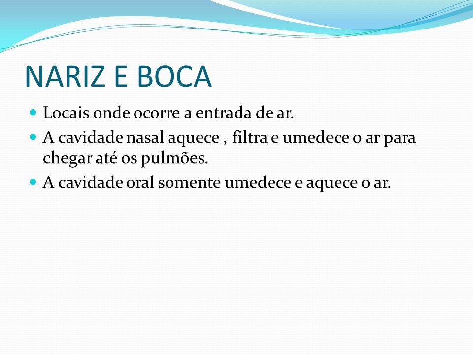 NARIZ E BOCA Locais onde ocorre a entrada de ar.